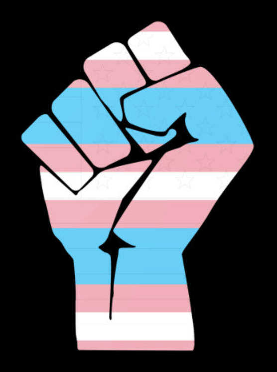 An illustrated power fist in the pink, blue, and white colors of the trans pride flag in front of black background